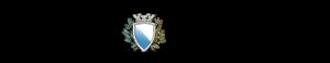 tagesanzeiger_logo