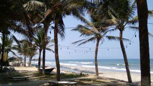 Zügiges WLAN am Strand, dazu frische Meeresfrüchte im restaurant Hon, Hoi An